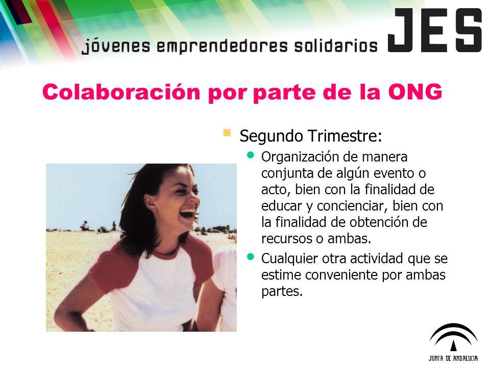 Colaboración por parte de la ONG Segundo Trimestre: Organización de manera conjunta de algún evento o acto, bien con la finalidad de educar y concienc