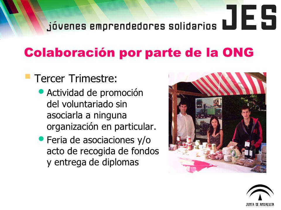 Colaboración por parte de la ONG Tercer Trimestre: Actividad de promoción del voluntariado sin asociarla a ninguna organización en particular. Feria d