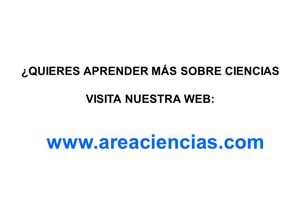 www.areaciencias.com ¿QUIERES APRENDER MÁS SOBRE CIENCIAS VISITA NUESTRA WEB: