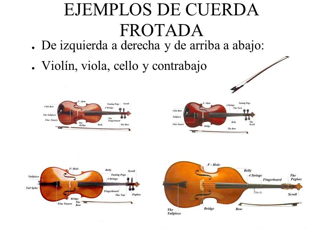 EJEMPLOS DE CUERDA FROTADA De izquierda a derecha y de arriba a abajo: Violín, viola, cello y contrabajo