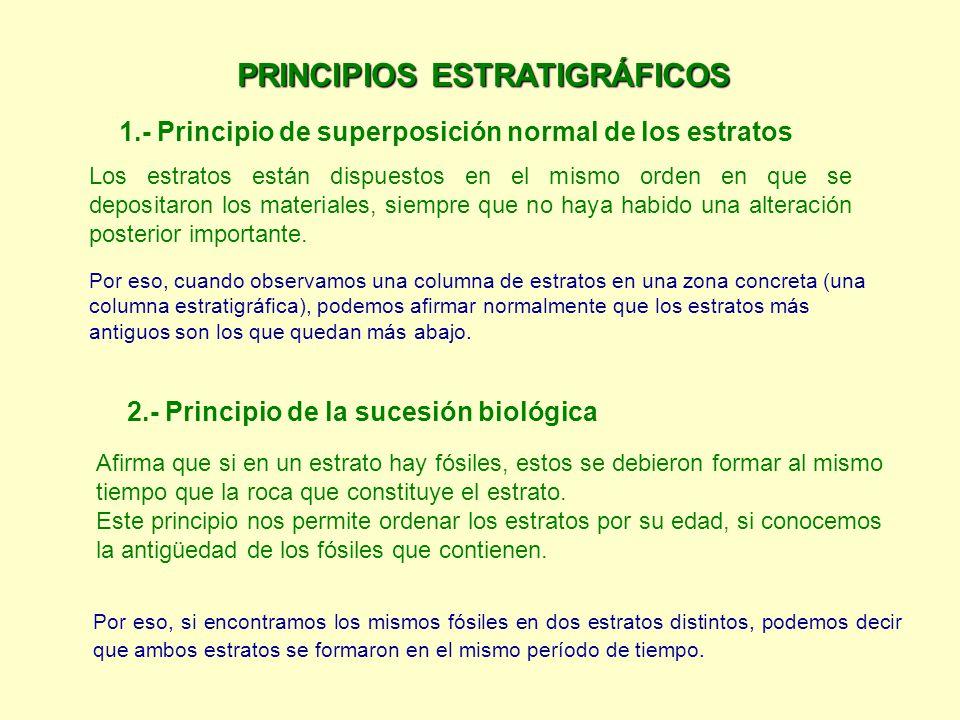 PRINCIPIOS ESTRATIGRÁFICOS 1.- Principio de superposición normal de los estratos Los estratos están dispuestos en el mismo orden en que se depositaron