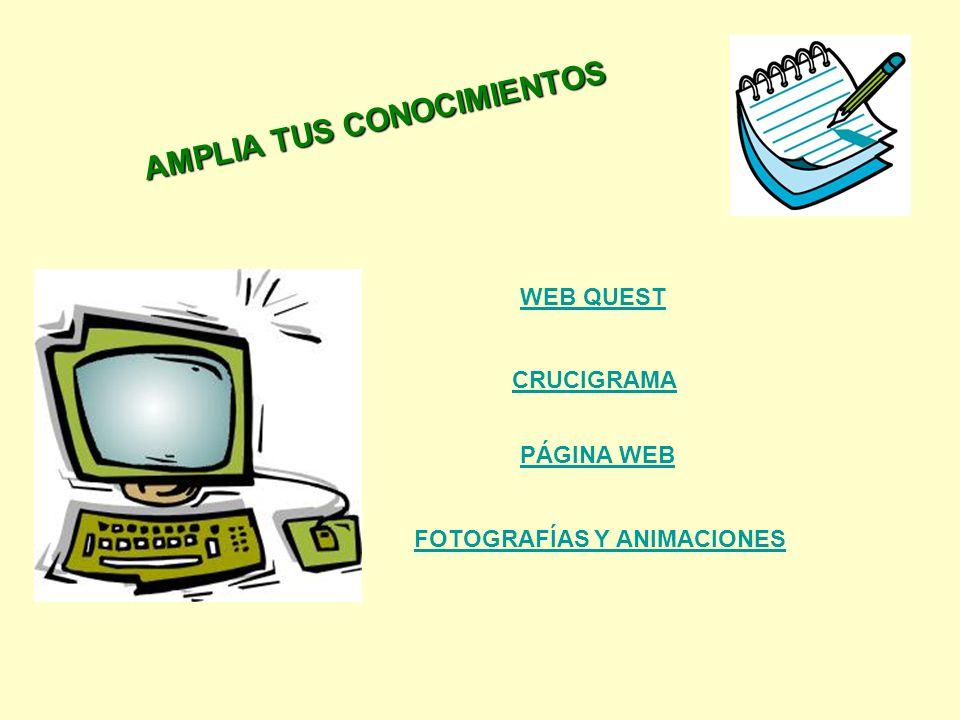 AMPLIA TUS CONOCIMIENTOS PÁGINA WEB WEB QUEST CRUCIGRAMA FOTOGRAFÍAS Y ANIMACIONES