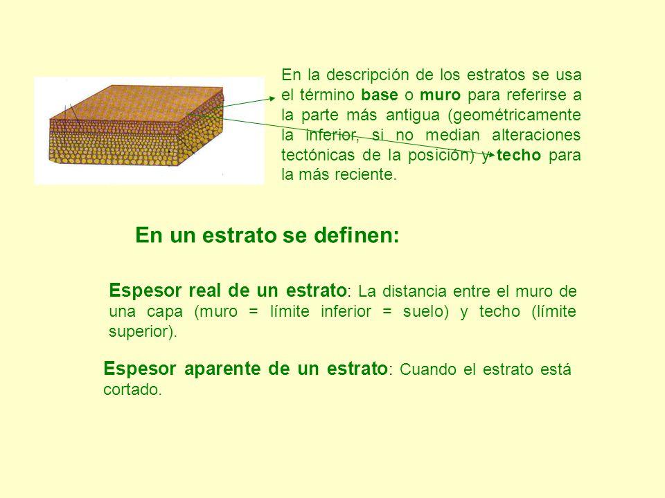 Espesor real de un estrato : La distancia entre el muro de una capa (muro = límite inferior = suelo) y techo (límite superior). Espesor aparente de un