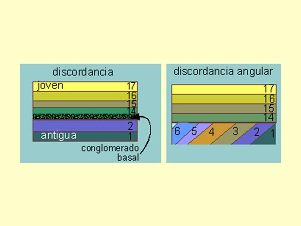 Reemplazo : Los componentes de la estructura original se van intercambiando molécula por molécula por minerales.