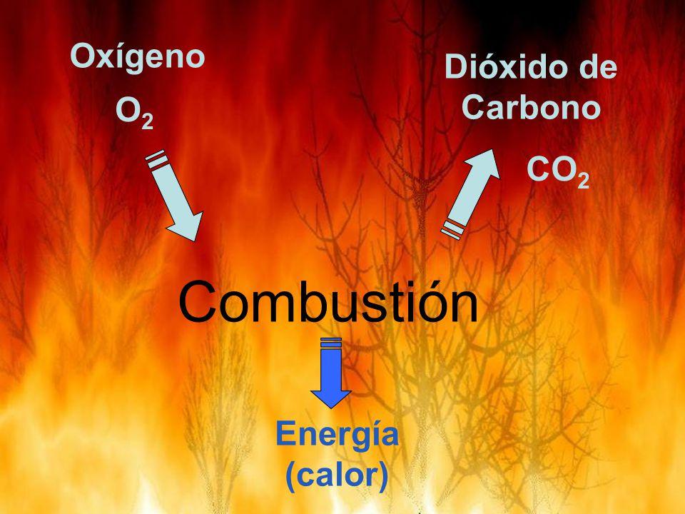 Combustión Dióxido de Carbono Oxígeno O2O2 CO 2 Energía (calor)