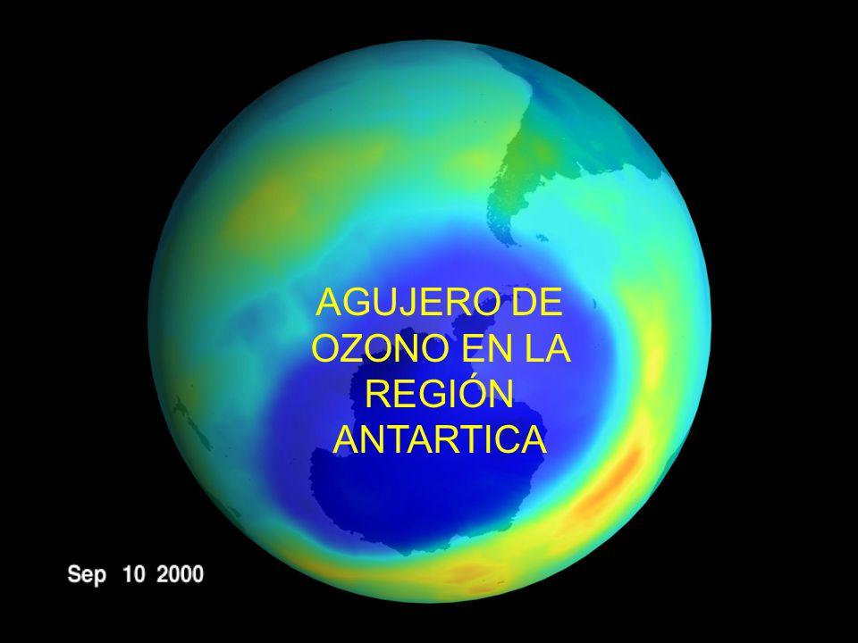 AGUJERO DE OZONO EN LA REGIÓN ANTARTICA