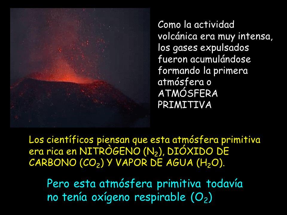 Oxígeno (O 2 ) Es un componente del aire muy reactivo, que oxida y permite que haya fuegos 0 O 2 átomos de O Molécula de oxígeno (O 2 )