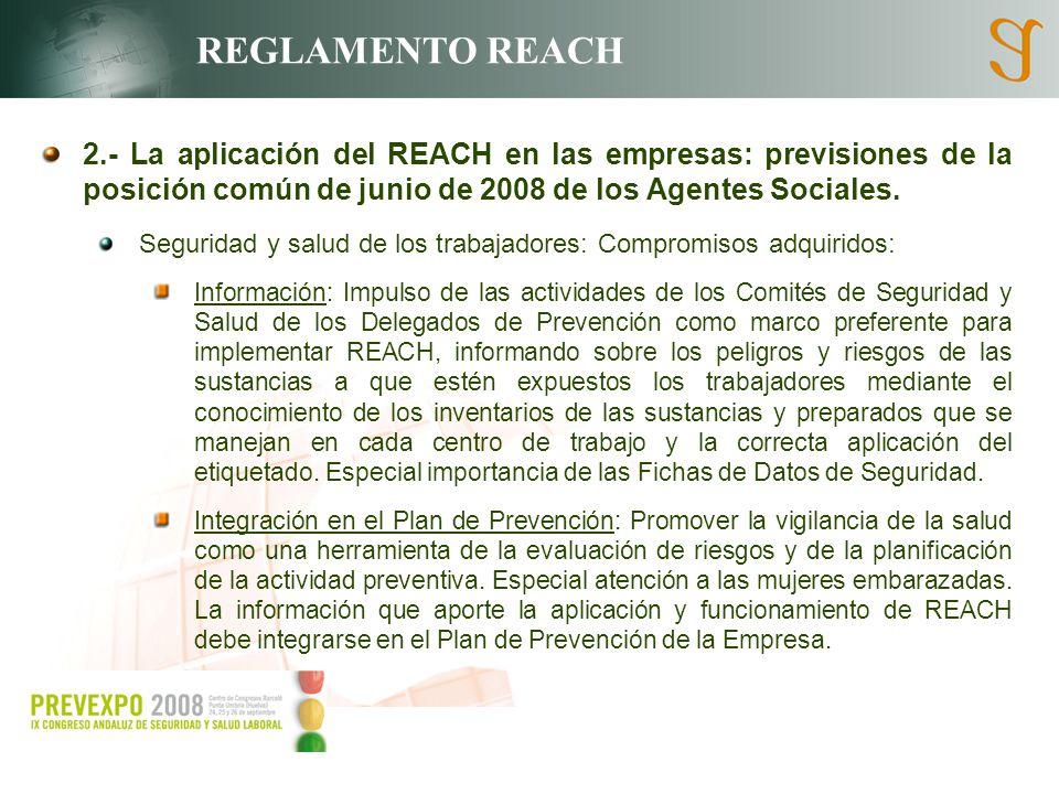 REGLAMENTO REACH 2.- La aplicación del REACH en las empresas: previsiones de la posición común de junio de 2008 de los Agentes Sociales. Seguridad y s