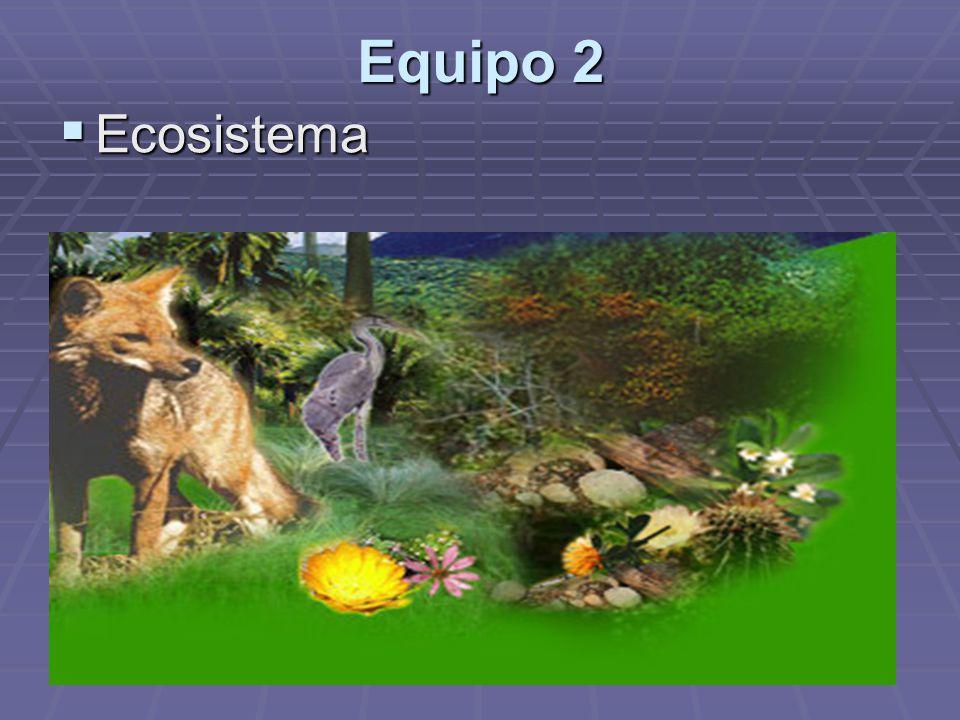 Equipo 2 Ecosistema Ecosistema