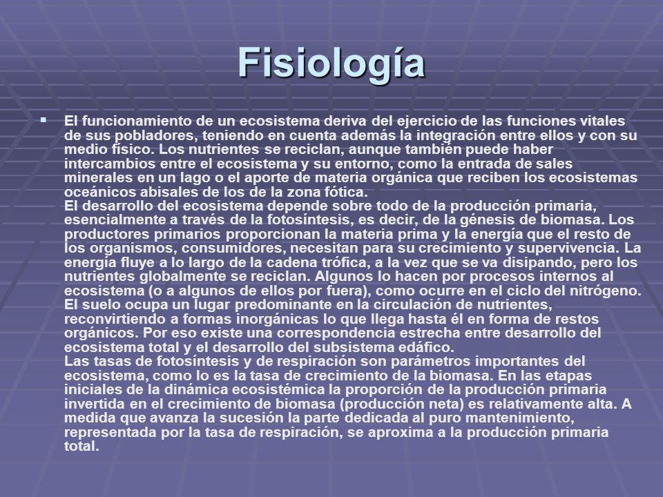 Fisiología El funcionamiento de un ecosistema deriva del ejercicio de las funciones vitales de sus pobladores, teniendo en cuenta además la integració