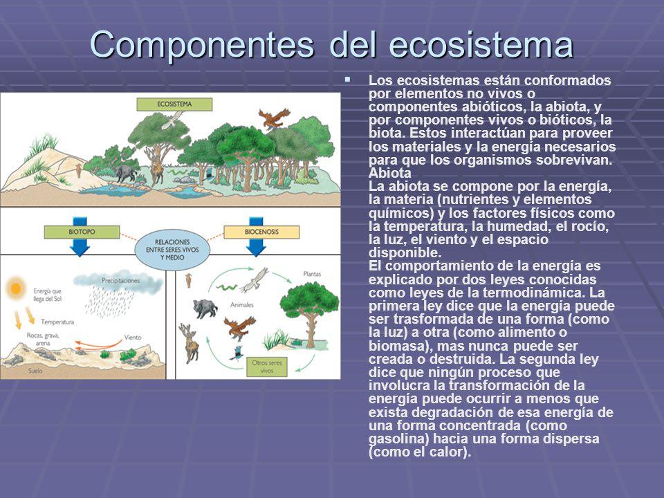 Componentes del ecosistema Los ecosistemas están conformados por elementos no vivos o componentes abióticos, la abiota, y por componentes vivos o biót