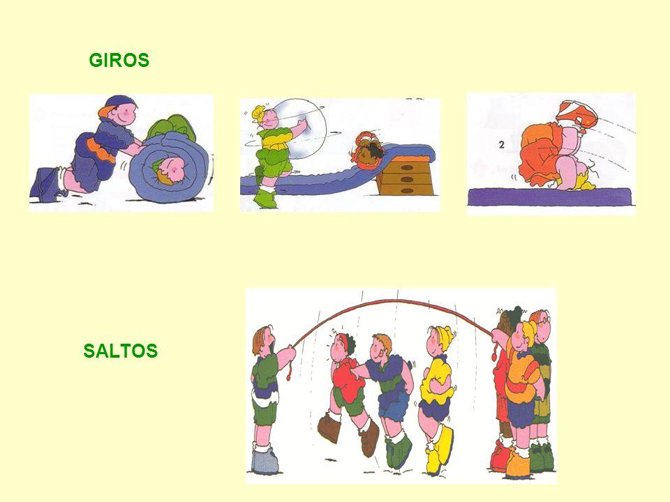 ACTIVIDADES RECREATIVAS Natación Winsurf Piragüismo Esquí