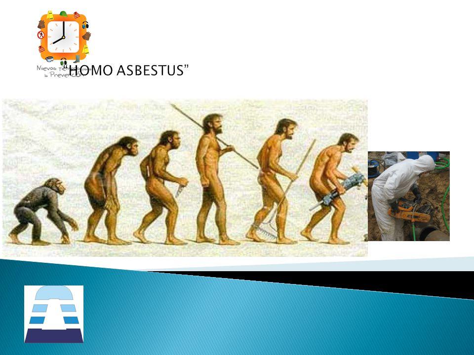 HOMO ASBESTUS
