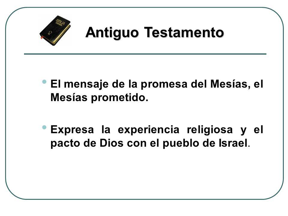 El mensaje de la promesa del Mesías, el Mesías prometido. Expresa la experiencia religiosa y el pacto de Dios con el pueblo de Israel. Antiguo Testame