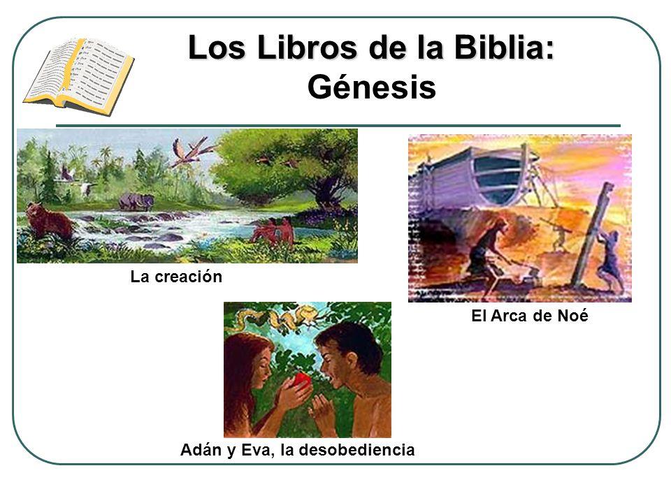 Los Libros de la Biblia: Los Libros de la Biblia: Génesis La creación Adán y Eva, la desobediencia El Arca de Noé