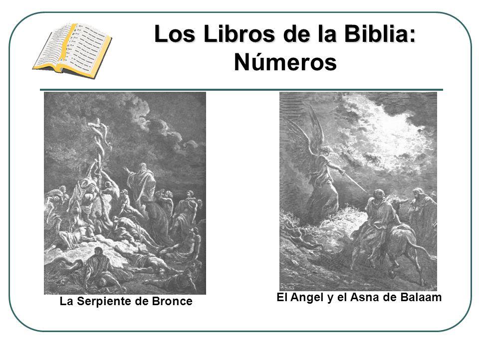 Los Libros de la Biblia: Los Libros de la Biblia: Números El Angel y el Asna de Balaam La Serpiente de Bronce