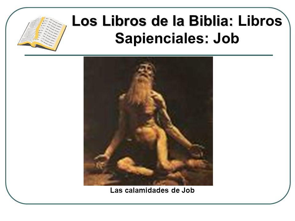 Los Libros de la Biblia: Los Libros de la Biblia: Libros Sapienciales: Job Las calamidades de Job