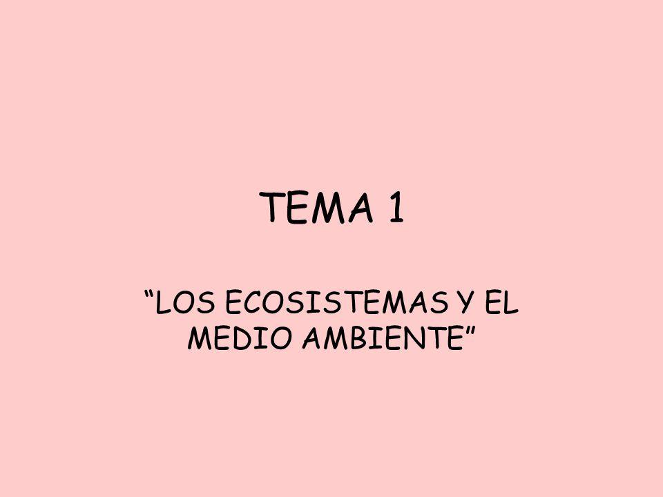 TEMA 1 LOS ECOSISTEMAS Y EL MEDIO AMBIENTE