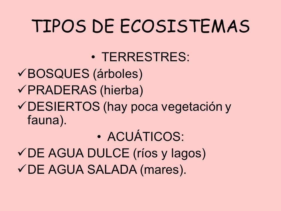 TIPOS DE ECOSISTEMAS TERRESTRES: BOSQUES (árboles) PRADERAS (hierba) DESIERTOS (hay poca vegetación y fauna). ACUÁTICOS: DE AGUA DULCE (ríos y lagos)