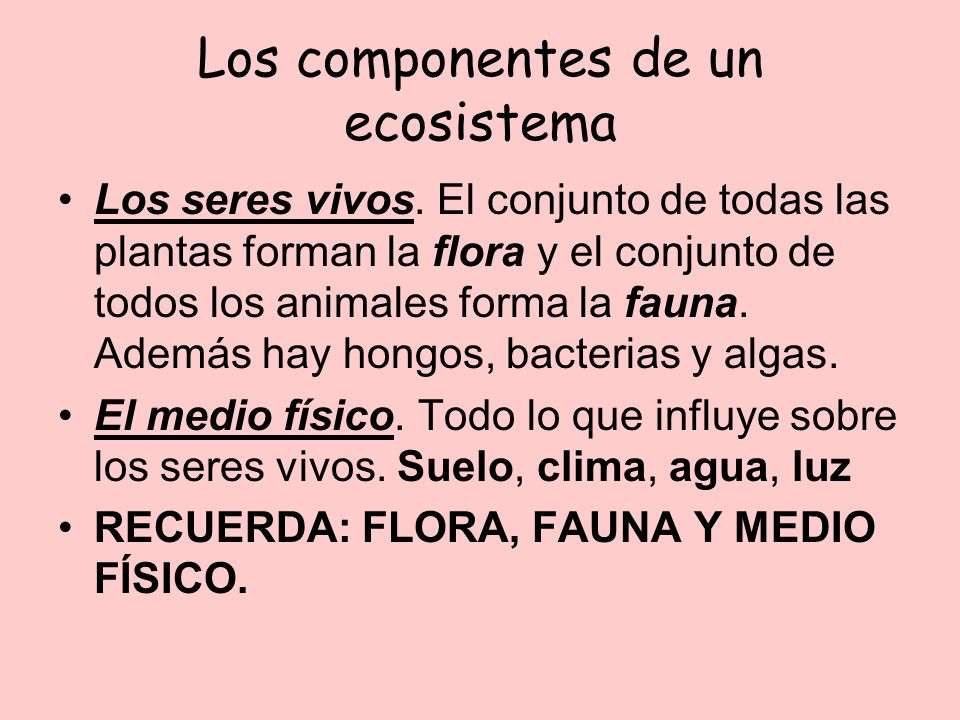 Los componentes de un ecosistema Los seres vivos. El conjunto de todas las plantas forman la flora y el conjunto de todos los animales forma la fauna.