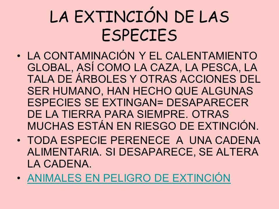 LA EXTINCIÓN DE LAS ESPECIES LA CONTAMINACIÓN Y EL CALENTAMIENTO GLOBAL, ASÍ COMO LA CAZA, LA PESCA, LA TALA DE ÁRBOLES Y OTRAS ACCIONES DEL SER HUMAN