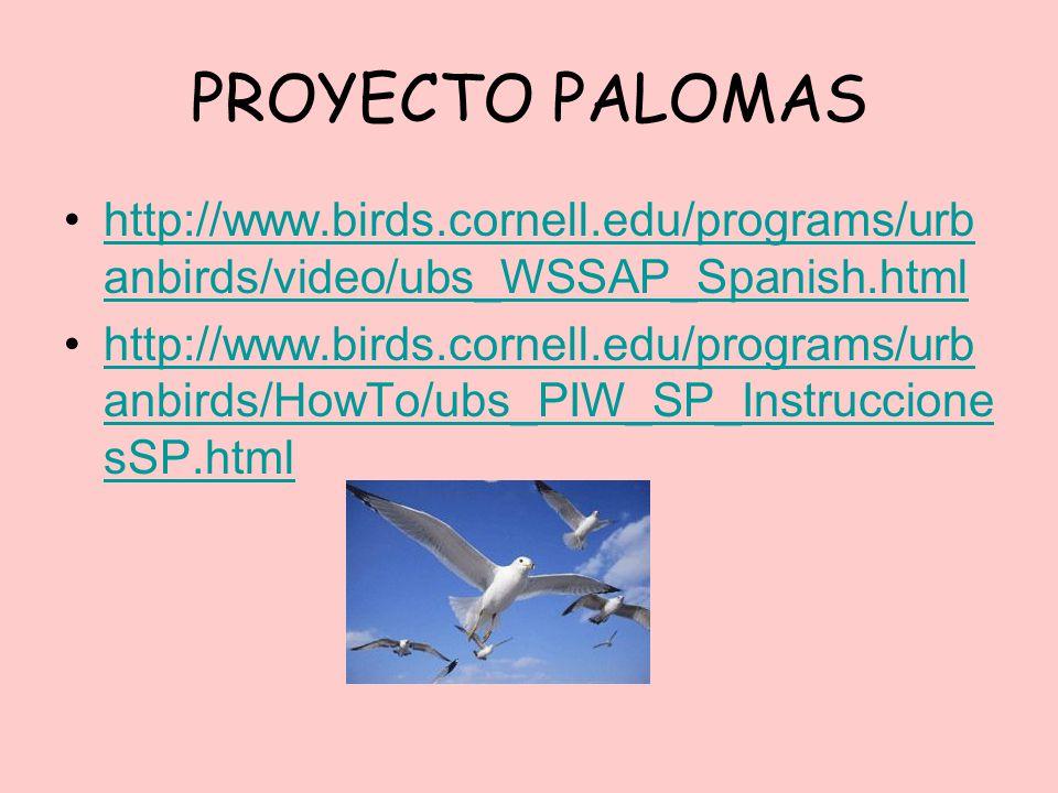 PROYECTO PALOMAS http://www.birds.cornell.edu/programs/urb anbirds/video/ubs_WSSAP_Spanish.htmlhttp://www.birds.cornell.edu/programs/urb anbirds/video