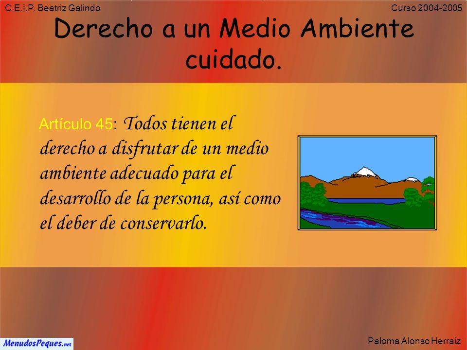 C.E.I.P. Beatriz Galindo Paloma Alonso Herraiz Curso 2004-2005 Derecho a la Cultura Artículo 44: Los poderes públicos promoverán y tutelarán el acceso