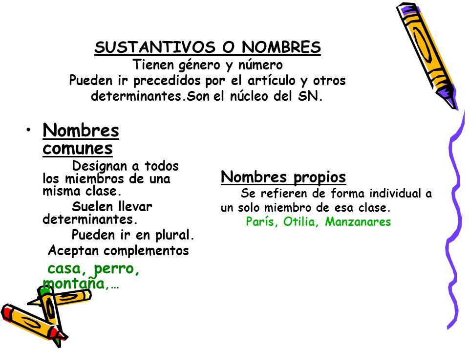 SUSTANTIVOS O NOMBRES Tienen género y número Pueden ir precedidos por el artículo y otros determinantes.Son el núcleo del SN. Nombres comunes Designan