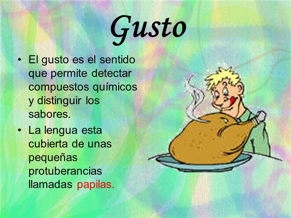 Gusto El gusto es el sentido que permite detectar compuestos químicos y distinguir los sabores. La lengua esta cubierta de unas pequeñas protuberancia