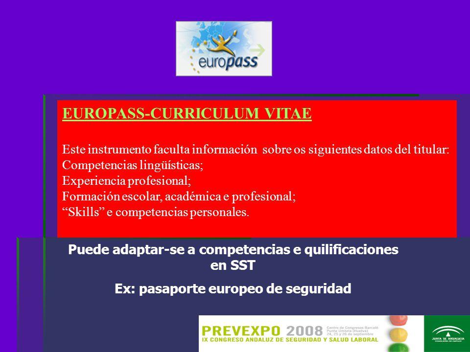 EUROPASS-CURRICULUM VITAE Este instrumento faculta información sobre os siguientes datos del titular: Competencias lingüísticas; Experiencia profesional; Formación escolar, académica e profesional; Skills e competencias personales.