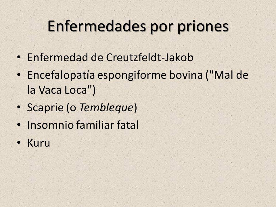 Enfermedades por priones Enfermedad de Creutzfeldt-Jakob Encefalopatía espongiforme bovina ( Mal de la Vaca Loca ) Scaprie (o Tembleque) Insomnio familiar fatal Kuru