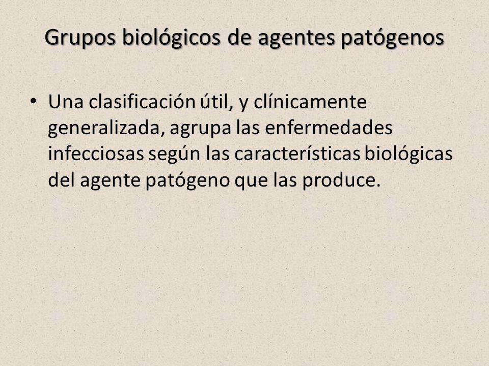 Grupos biológicos de agentes patógenos Una clasificación útil, y clínicamente generalizada, agrupa las enfermedades infecciosas según las características biológicas del agente patógeno que las produce.
