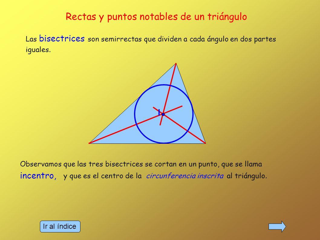 Las bisectrices son semirrectas que dividen a cada ángulo en dos partes iguales.