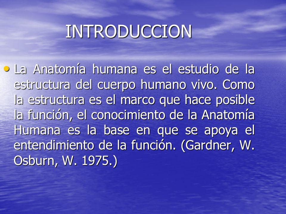 INTRODUCCION La Anatomía humana es el estudio de la estructura del cuerpo humano vivo. Como la estructura es el marco que hace posible la función, el