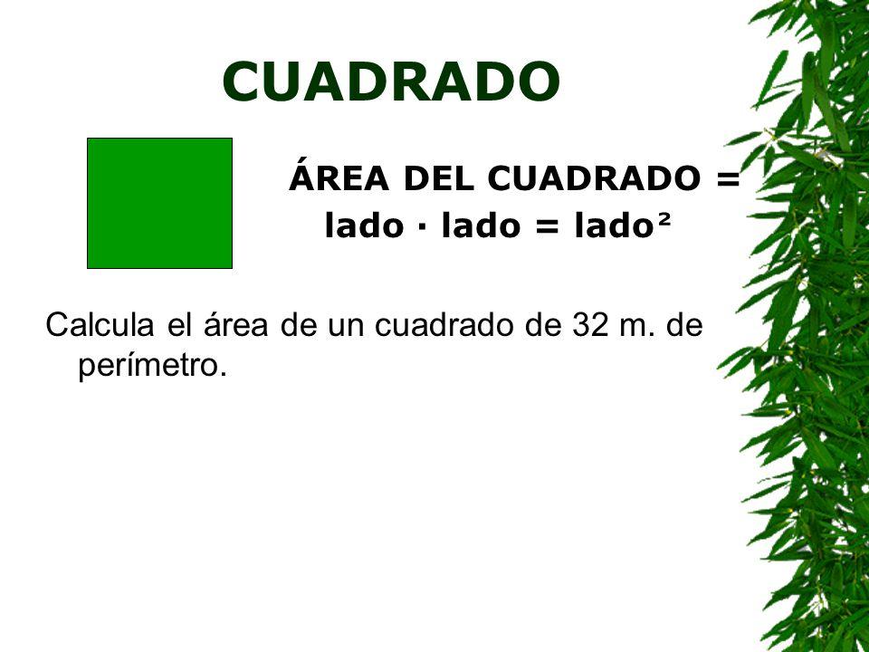 Base10 cm2,1 hm3,2 km Altura0,2 m0,5 dm25 hm Área1,68 hm 2 67 cm 2