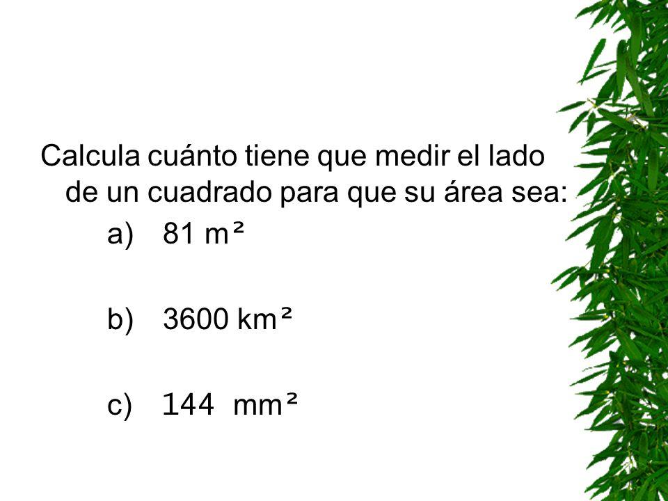 CUADRADO ÁREA DEL CUADRADO = lado · lado = lado ² Calcula el área de un cuadrado de 32 m.