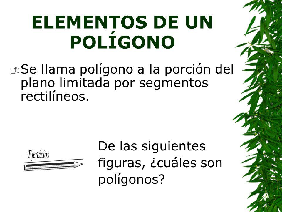 CONCEPTOS IMPORTANTES SOBRE POLÍGONOS La palabra polígono procede del griego y significa muchos ángulos