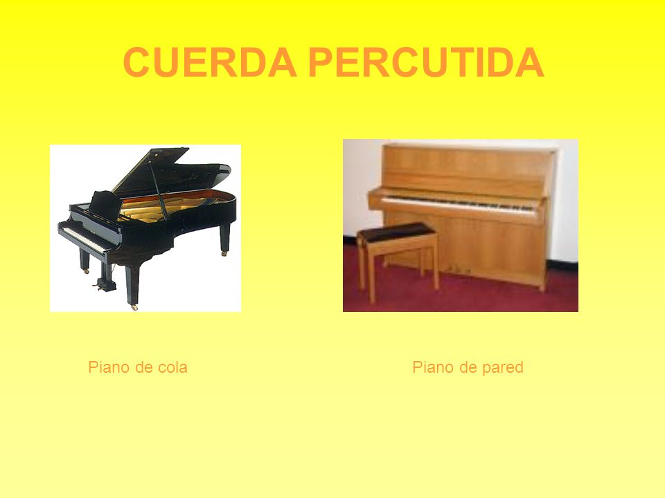 CUERDA PERCUTIDA Piano de colaPiano de pared