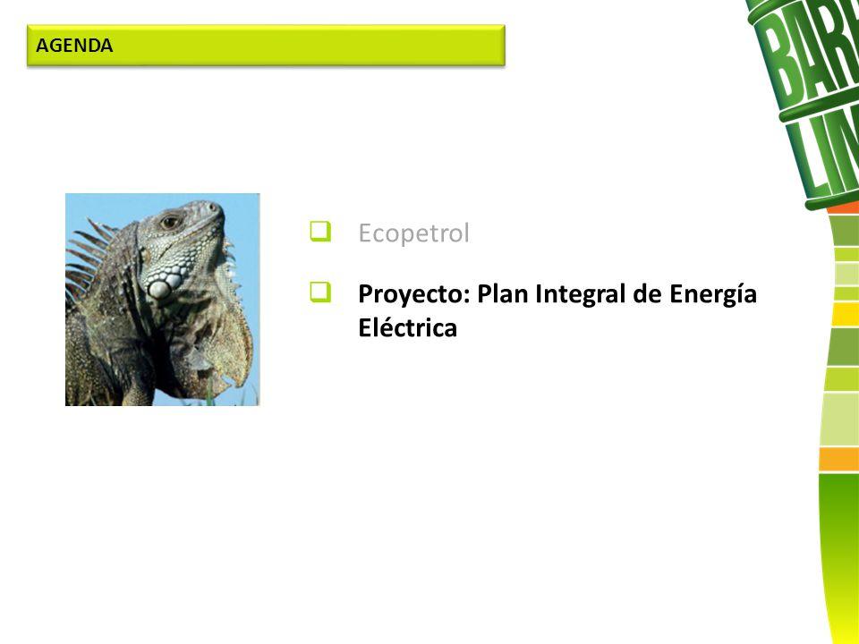 Ecopetrol Proyecto: Plan Integral de Energía Eléctrica AGENDA