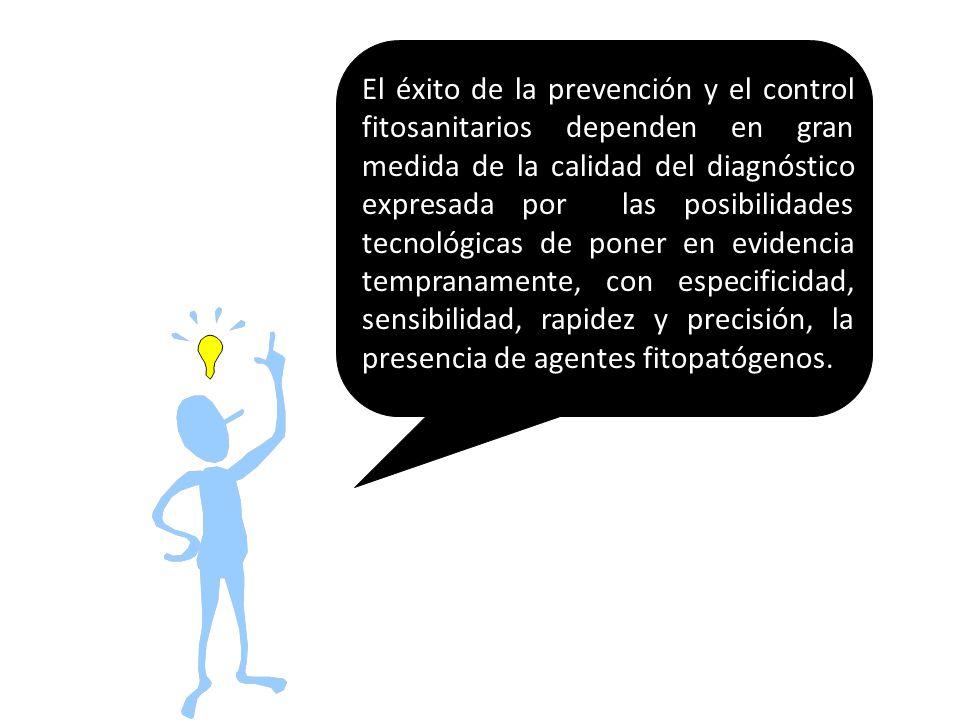 El éxito de la prevención y el control fitosanitarios dependen en gran medida de la calidad del diagnóstico expresada por las posibilidades tecnológic