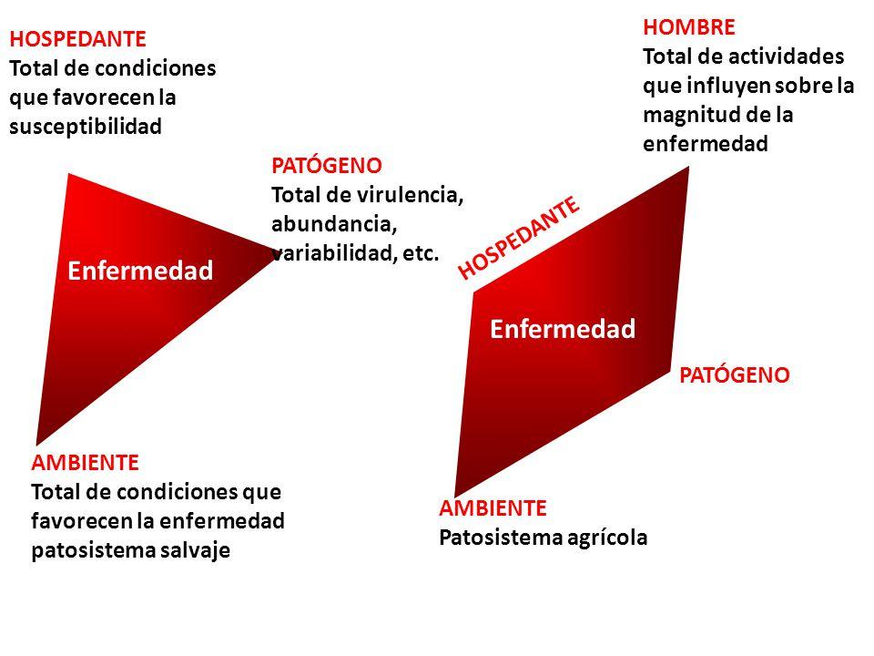Enfermedad AMBIENTE Patosistema agrícola PATÓGENO HOSPEDANTE HOMBRE Total de actividades que influyen sobre la magnitud de la enfermedad Enfermedad AM