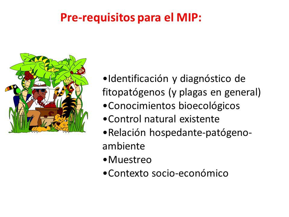 Pre-requisitos para el MIP: Identificación y diagnóstico de fitopatógenos (y plagas en general) Conocimientos bioecológicos Control natural existente