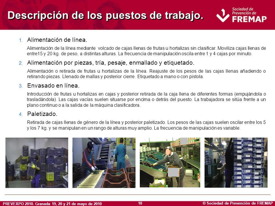 © Sociedad de Prevención de FREMAP PREVEXPO 2010. Granada 19, 20 y 21 de mayo de 2010 10 Descripción de los puestos de trabajo. 1. Alimentación de lín