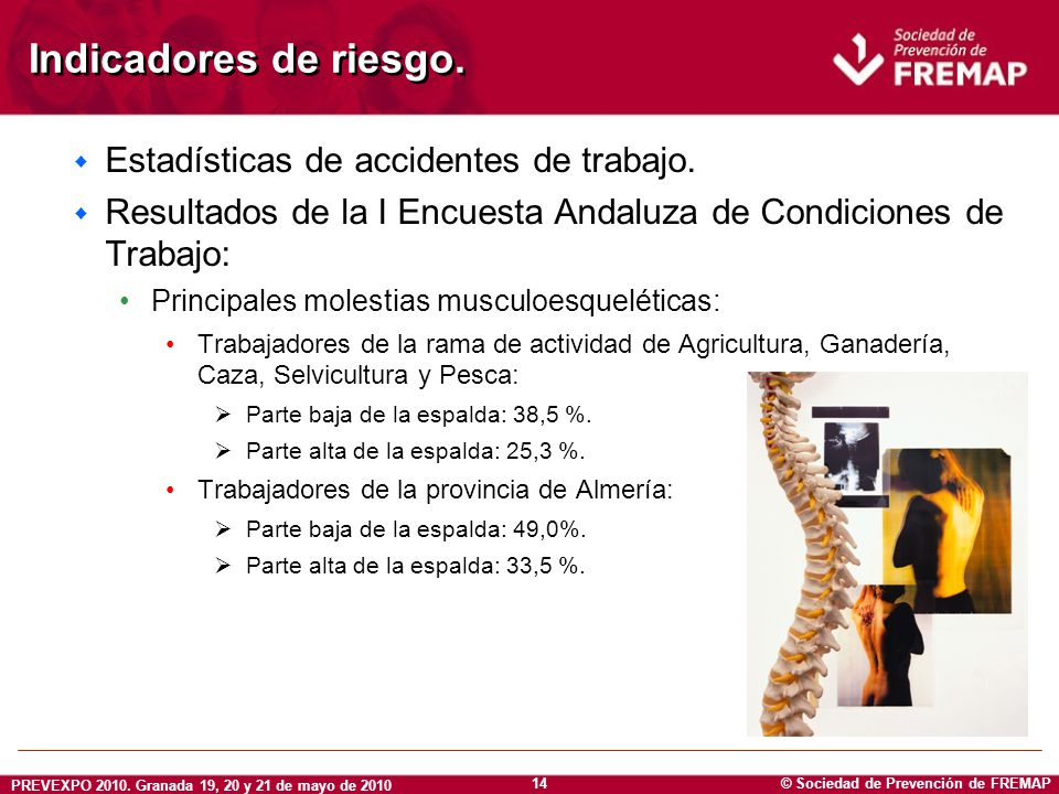© Sociedad de Prevención de FREMAP PREVEXPO 2010. Granada 19, 20 y 21 de mayo de 2010 14 Indicadores de riesgo. w Estadísticas de accidentes de trabaj