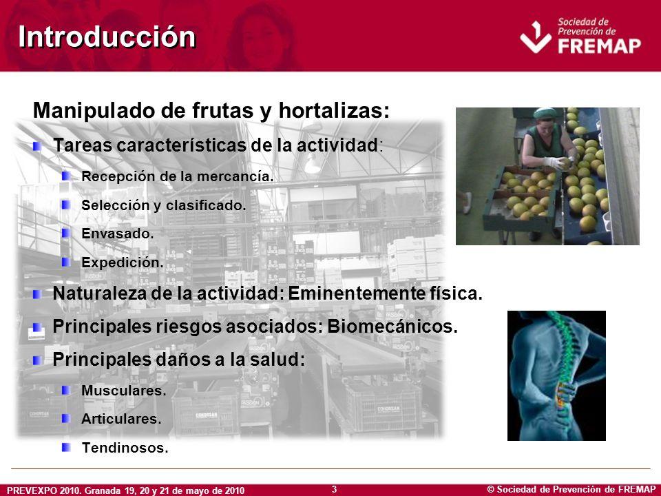 © Sociedad de Prevención de FREMAP PREVEXPO 2010. Granada 19, 20 y 21 de mayo de 2010 3 Introducción Manipulado de frutas y hortalizas: Tareas caracte