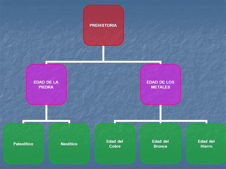 Organización social: Organización social: Mayor división del trabajo.