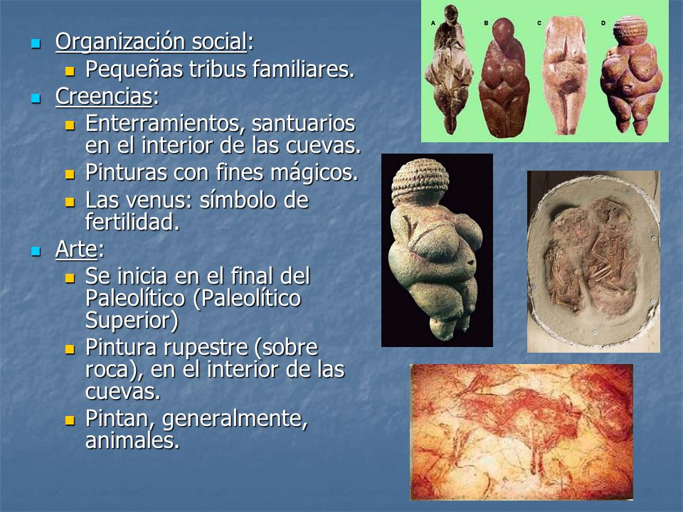 Organización social: Organización social: Pequeñas tribus familiares. Pequeñas tribus familiares. Creencias: Creencias: Enterramientos, santuarios en