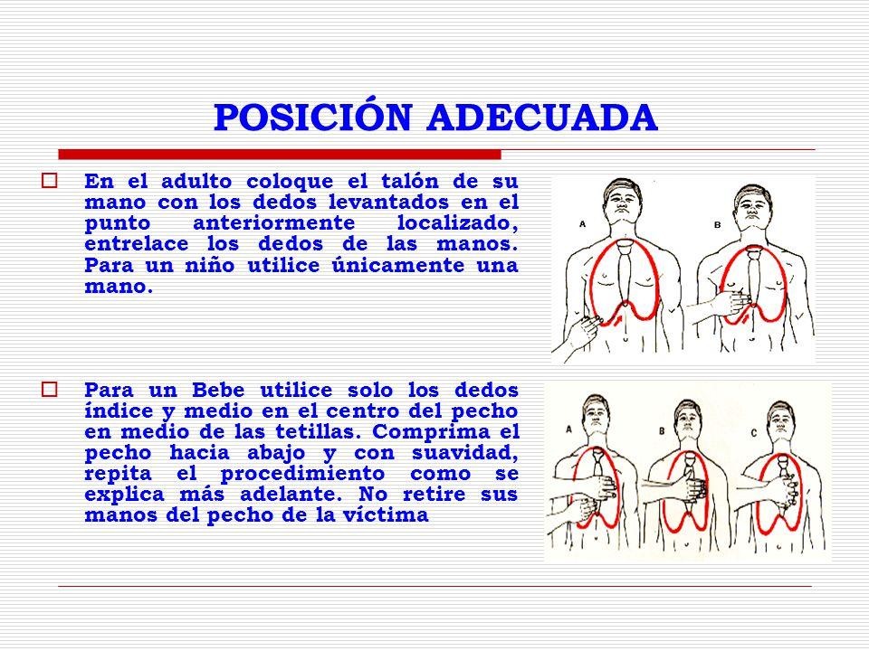 POSICIÓN ADECUADA En el adulto coloque el talón de su mano con los dedos levantados en el punto anteriormente localizado, entrelace los dedos de las manos.