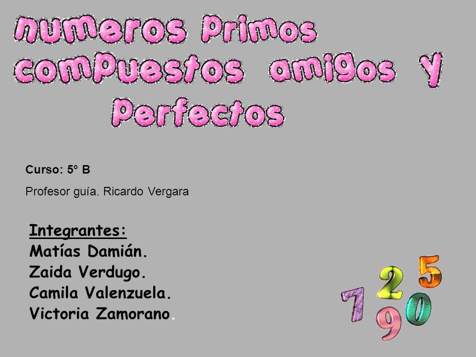 Integrantes: Matías Damián. Zaida Verdugo. Camila Valenzuela. Victoria Zamorano. Curso: 5° B Profesor guía. Ricardo Vergara