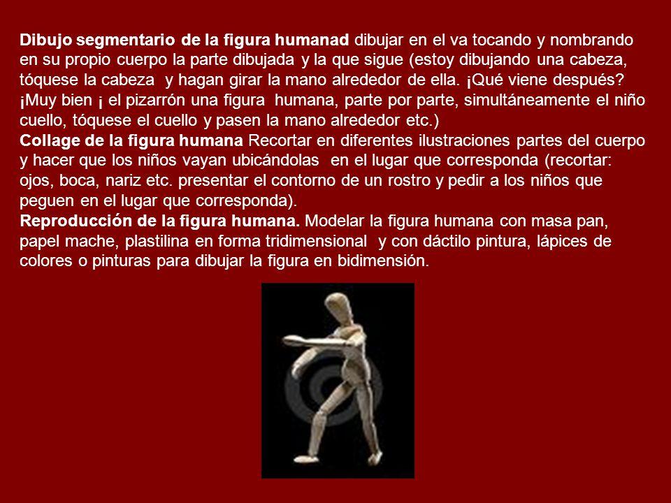 Dibujo segmentario de la figura humanad dibujar en el va tocando y nombrando en su propio cuerpo la parte dibujada y la que sigue (estoy dibujando una